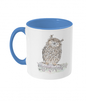 Happy Owl Two Tone Mug Cambridge Blue