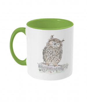 Happy Owl Two Tone Mug Light Green